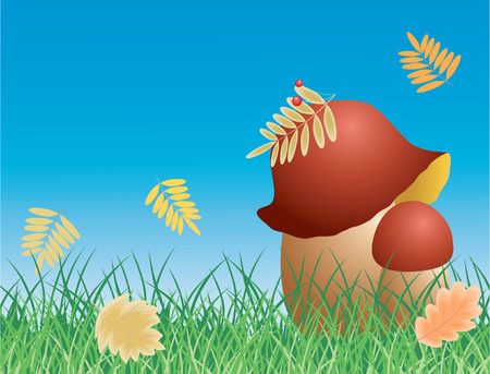The vector image of the mushrooms and autumn leaves in the grass.