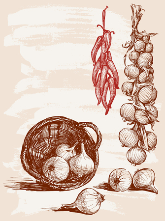 Vector drawing of the harvested peppers and onions.