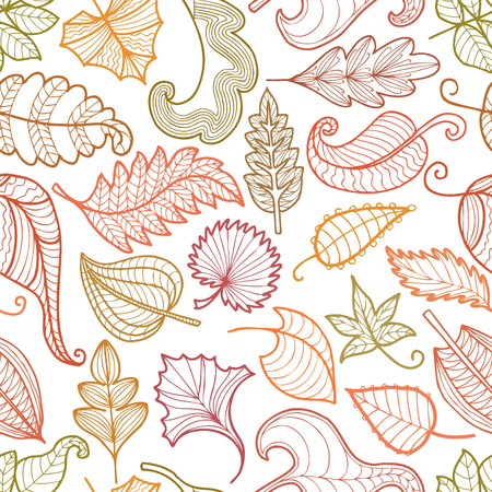 Vector pattern of the decorative autumn leaves. Illustration