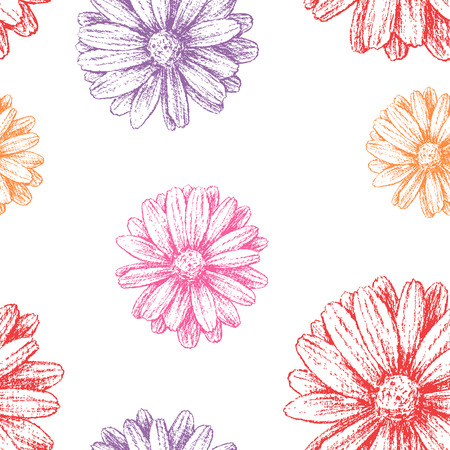 Vector pattern of the different garden flowers.