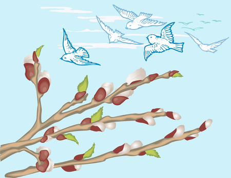a sprig: The vector image of the spring willow branches and flying birds. Illustration