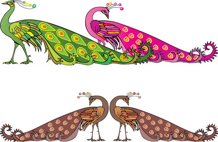 beak: The vector image of the decorative peacocks.
