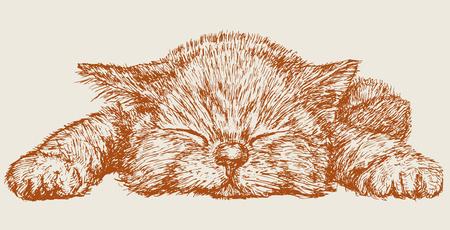 Il disegno vettoriale di un gattino dorme nello stile di uno schizzo.