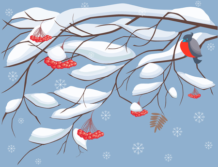 The vector image a vector of branches of a mountain ash tree under snow with a sitting bird. Illustration
