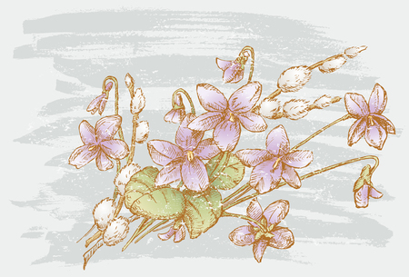 Vector image of a spring bouquet