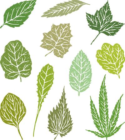 De verzameling van de bladeren van de verschillende kruiden planten Stock Illustratie