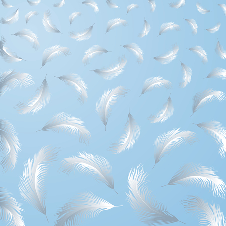 The vector background of the white birds feathers.