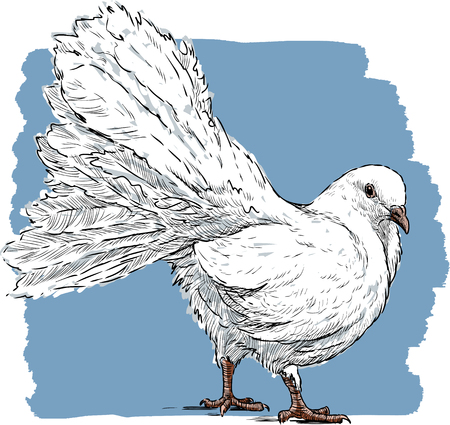piece: Hand drawing of a white dove