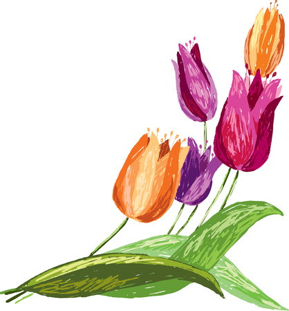 Vector drawing of a bunch of the tulips