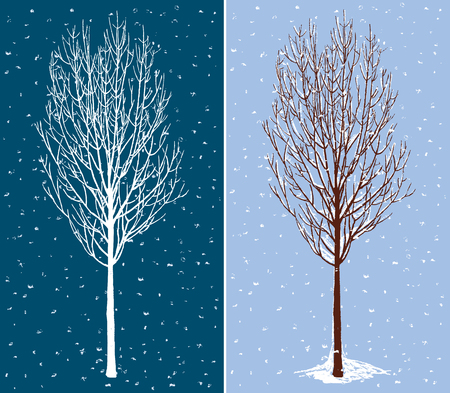 Vector illustration of a deciduous tree in december