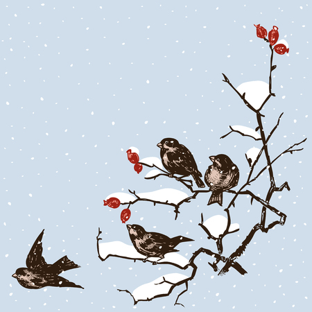 Vector illustration of the sparrows in december