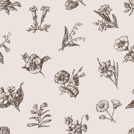 Het vectorpatroon van de verschillende schetsenbloemen.