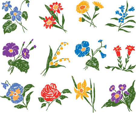 jonquil: Set of the different flowers