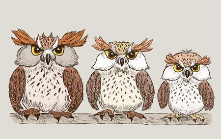 漫画面白いフクロウの家族  イラスト・ベクター素材