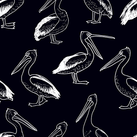 pattern of the drawn pelicans