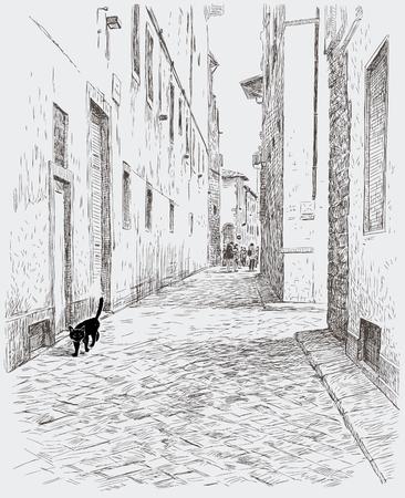 Black kitten walks in cobblestone road.