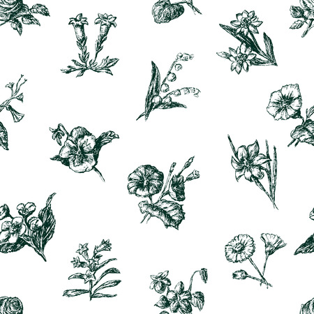 pattern of the sketches of different flowers