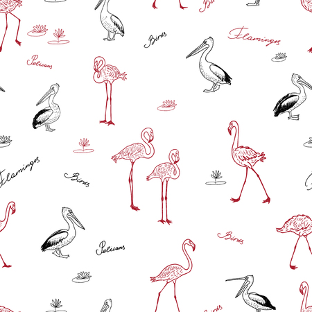Seamless background of drawn flamingos and pelicans