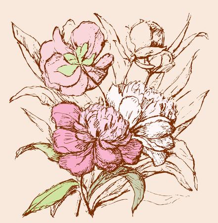 Sketch of a bouquet of peonies Vecteurs
