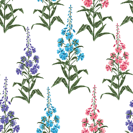 Seamless background of flowers of tea willow Çizim