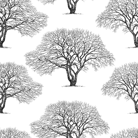 Seamless background of trees silhouettes