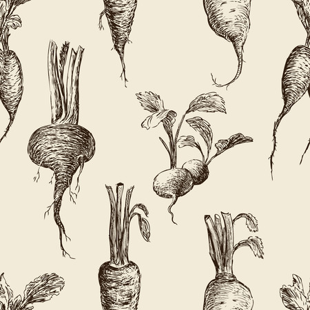 Seamless pattern of the sketches of different root vegetables