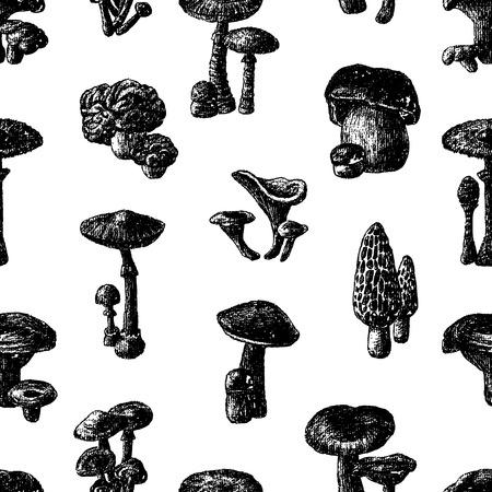 Vector pattern of various mushrooms
