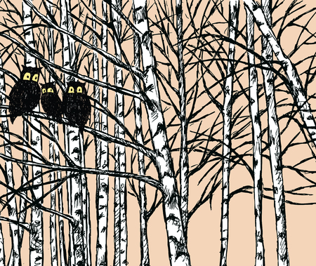 Vector image of owls in the birch forest Illustration