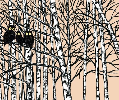 Vector image of owls in the birch forest Illusztráció