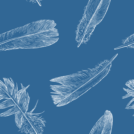 Vector pattern of sketches of birds feathers