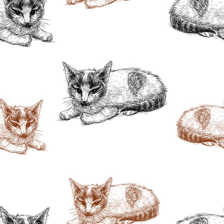 Vector pattern of sketches of kittens Standard-Bild - 117033404