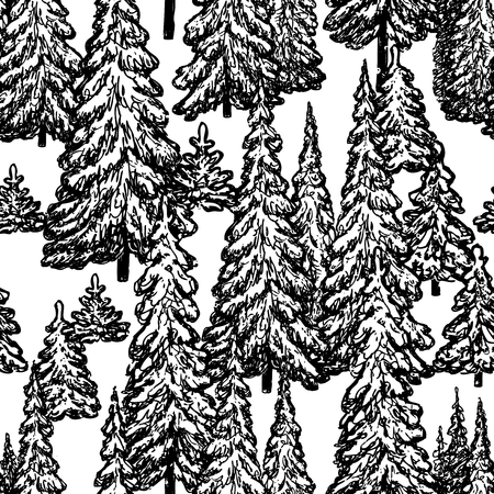 seamless pattern of drawn fir forest 写真素材 - 124850711