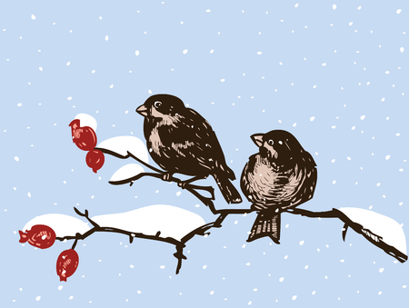 Sparrows sit on branches in a winter day Ilustracja