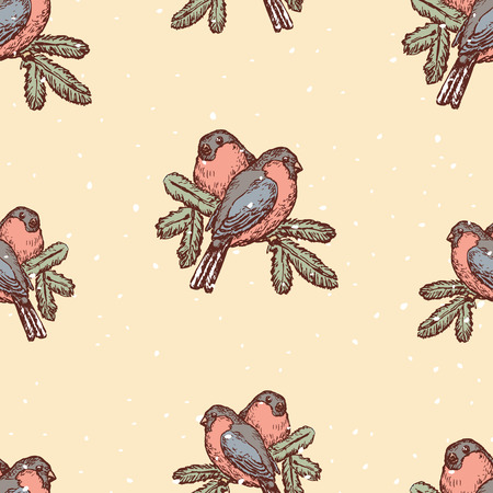 Background of bullfinches on spruce branches