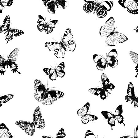 seamless pattern of different butterflies