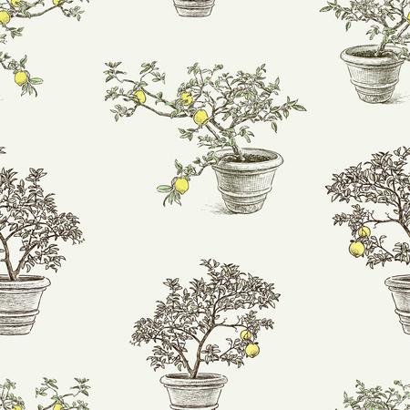 Seamless pattern of lemon trees in the flowerpots
