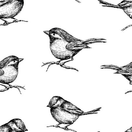 Pattern of drawn small birds  イラスト・ベクター素材