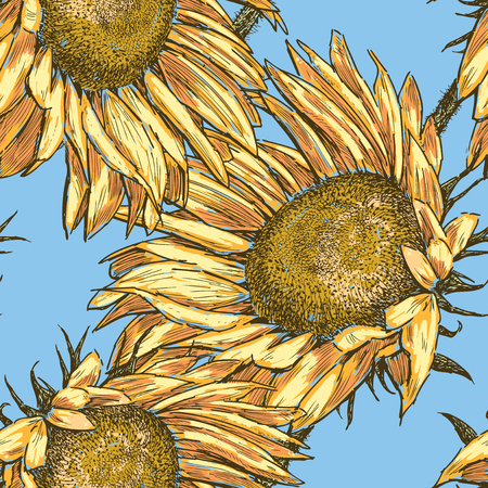 Seamless background of ripe sunflowers