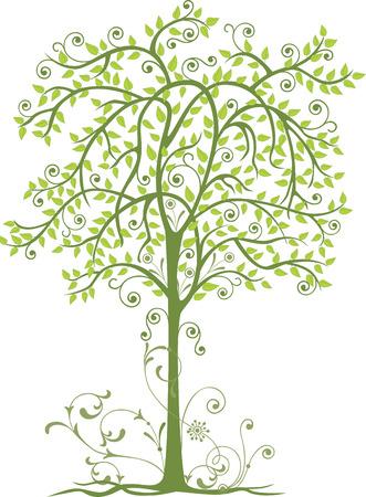 A decorative deciduous tree Ilustracja