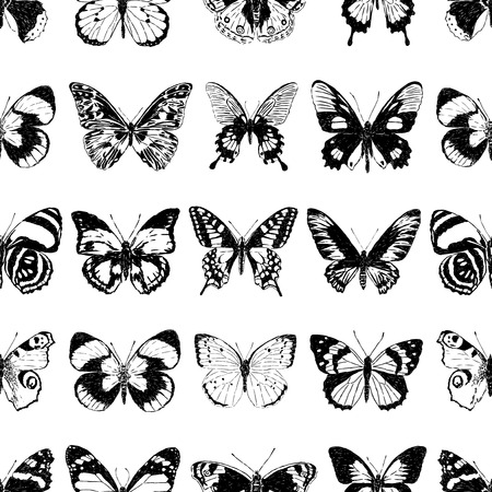 Seamless background of different drawn butterflies