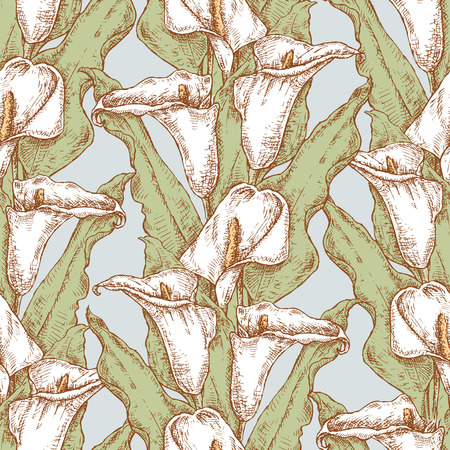 Seamless background of drawn calla lilies