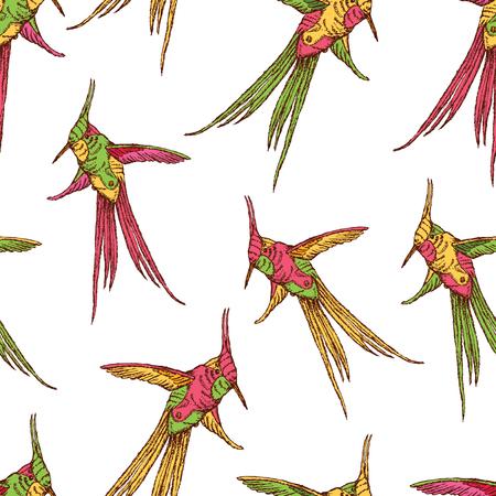 Seamless background of flying hummingbird  イラスト・ベクター素材