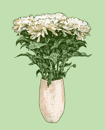 Vector image of bouquet of chrysanthemums in a vase