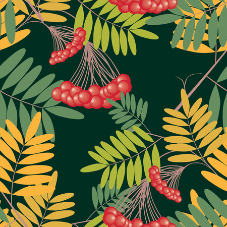 Seamless pattern of rowan branches with berries
