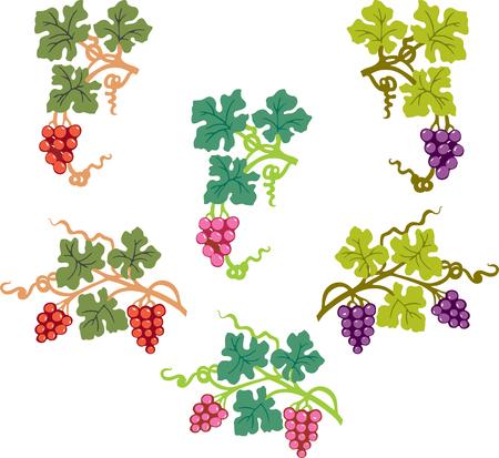 A set of decorative vine branches
