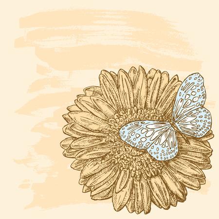 Vector illustration of a butterfly sitting on a sunflower Zdjęcie Seryjne - 127660846