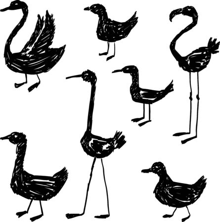 Vector image of drawn silhouettes of various waterbirds