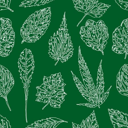 Seamless pattern of outlines of various herbaceous leaves