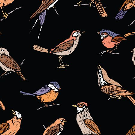 Seamless pattern of various drawn wild birds Ilustrace