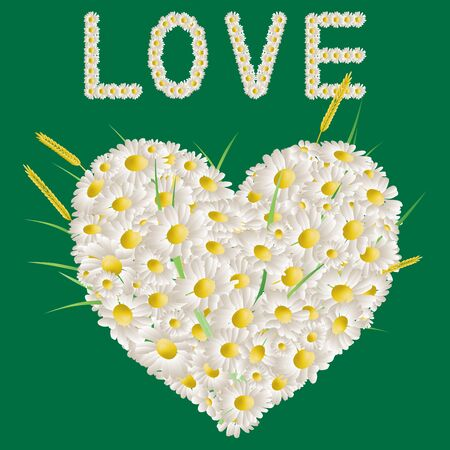 Vector greeting card with floral heart and lettering love from white chamomiles  Ilustrace